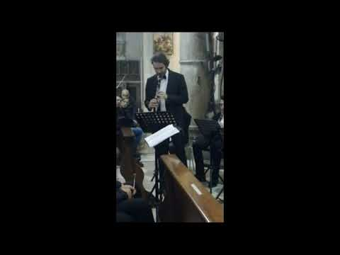 "Clarinet ""DESTINY"" Clarinet and wind band G.Stefano"