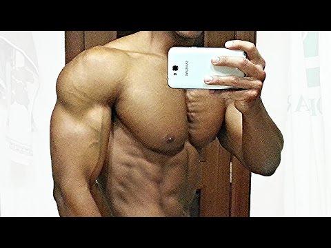 Le muscle sur autre des manières de 6 lettres