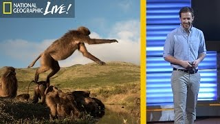 The Fascinating Lives of Bleeding Heart Monkeys (Part 3) | Nat Geo Live thumbnail