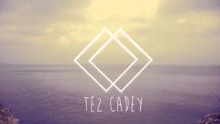 Tez Cadey - Coastal Cat