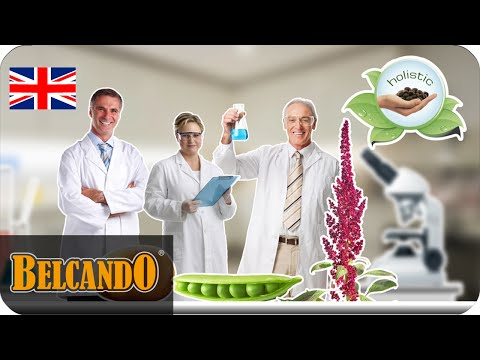 BELCANDO | dog food ingredients #3 grain free