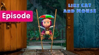 Masha and The Bear - 🐱 Like Cat And Mouse 🐭 (Episode 58)