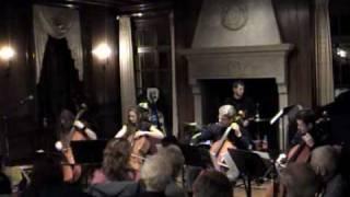 Primitivity - 'Quutamo' and 'Heat' by Apocalyptica (accoustic).avi