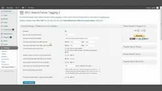 SEO Search Terms tagging 2 Review