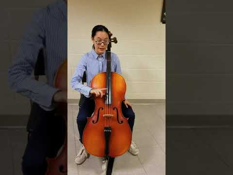 Here is a video of me demonstrating pizzicato. This is part of a project when I took String Methods as part of my Music Education degree.