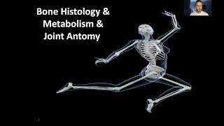 OrthoTips - #1 Bone histology & metabolism