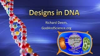 Designs in DNA
