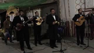 Serenata Virgen de Guadalupe Los Dandys - Linda Madrecita 4K