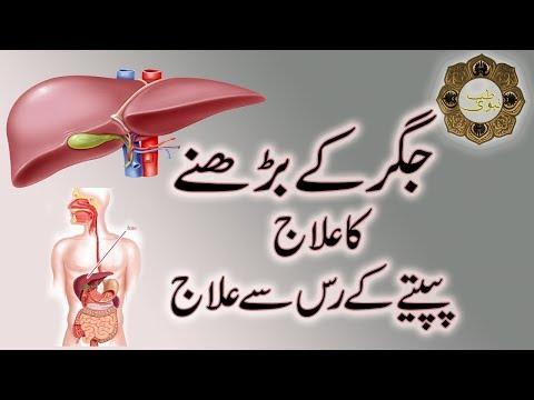 Download Tib E Nabvi Jigar Ki Bimaari Htv Video 3GP Mp4 FLV HD Mp3