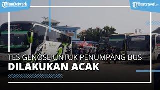 Tes GeNose untuk Penumpang Bus Akan Dilakukan Acak