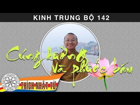 Kinh Trung Bộ 142 (Kinh Phân Biệt Cúng Dường) - Cúng dường và phước báu (20/09/2009)