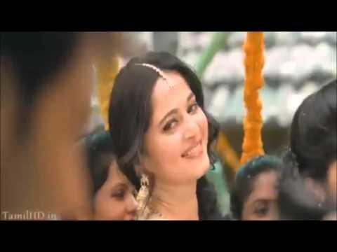 groom in the video