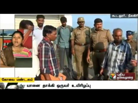 A-Compilation-of-Kovai-Zone-News-30-03-16-Puthiya-Thalaimurai-TV
