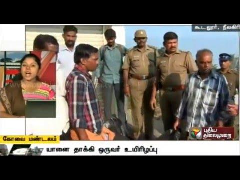 A-Compilation-of-Kovai-Zone-News-30-03-16-Puthiya-Thalaimurai-TV