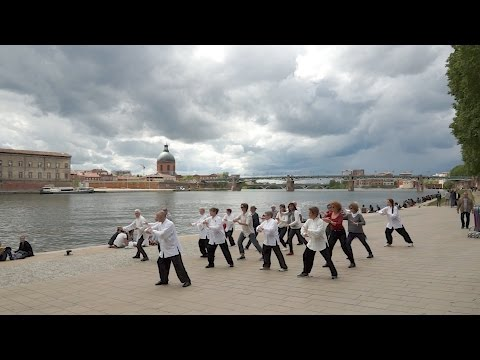 Flash Mob Toulouse