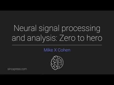 Origin, significance, and interpretation of EEG - YouTube