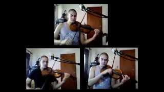 bob marley is this love - cover on violin