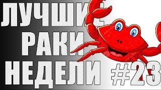ЛРН выпуск №23. Фугасный КОЛОБАНОВ [Лучшие Раки Недели]