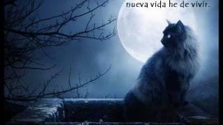 "Video thumbnail of ""Kika Edgar - Recuerdo  (Memory)(from Cats) + Letra...Royer Xatzigiannis."""
