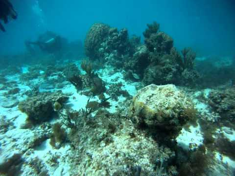 Scuba Diving in Cayo Largo 2013 – First Dive