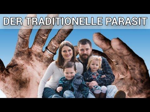 Die Parasiten ist es des motorischen Systems stütz-