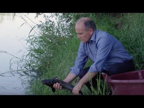 La regione di Bryansk che pesca su una picca