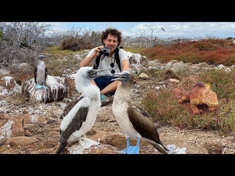 Un Viaje Interesante a Las Islas Galápagos