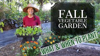 What I'm Planting Now-- Fall Vegetable Garden Zone 6