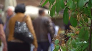 Od početka godine 21 žena prijavila nasilje u opštini Stara Pazova