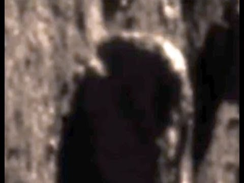 Alien with Breathing Tube?