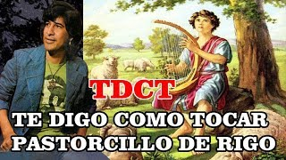 TDCT Te Digo Como Tocar PASTORCILLO tema instrumental de RT y Costa Azul