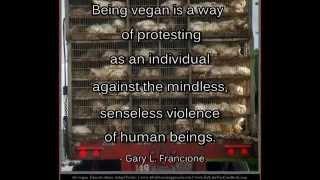 Compilation Of Animal Rights Quotes: Professor Gary L. Francione (No. 1)