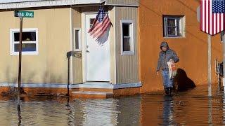 Повышение уровня воды в океане, или Последнее видео TomoNews