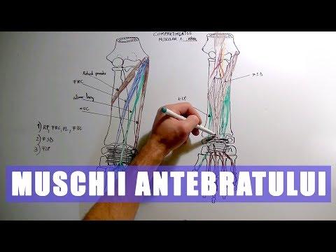 Durere foarte severă la nivelul articulațiilor picioarelor