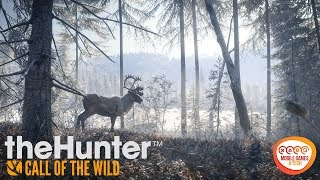 theHunter: Call of the Wild PS4 PRO Winter Hunting - Best Time For Hunting