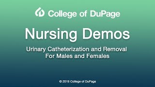 Nursing Demos: Urinary Catheterization and Removal for Males and Females