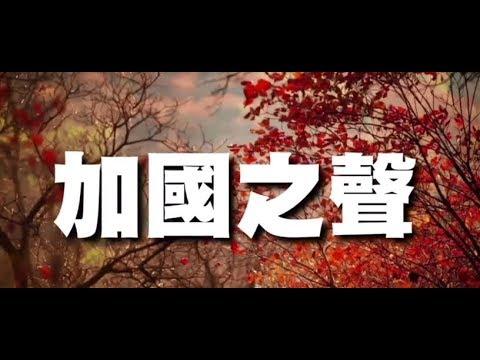 曹长青先生想要如何干掉造生词的古人?