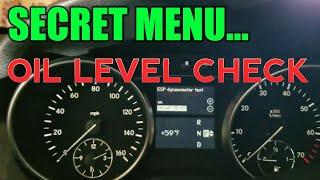 Mercedes Battery & Alternator Check Via Secret Menu (Easy +