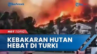 Penampakan Kebakaran Hutan Terparah di Turki, Ada 50 Titik Api hingga Warga Sebut Seperti Neraka