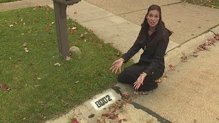 Don't fall for the curb painting scam, police share warning with Tara Molina