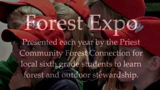 Forest Expo 2014