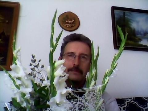 Веллтекс крем от пигментных пятен цена фото