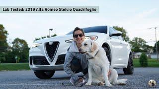 2019 Alfa Romeo Stelvio Quadrifoglio: Andie the Lab Review!