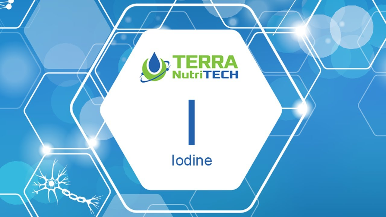 How Iodine Plays a Key Role in Thyroid Function?