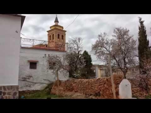 Turón  localidad y municipio español perteneciente a la provincia de Granada
