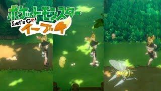 コクーン  - (ポケットモンスター) - 【ピカブイ】ビードル&コクーン&スピアーの連れ歩き!【ポケモンレッツゴー イーブイ】