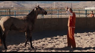 The Mustang - Official Trailer (Universal Pictures) HD