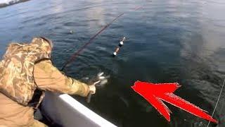 Рыбалка летняя на енисее