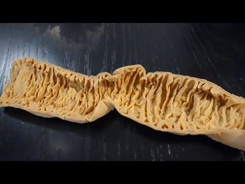 Die Larven der Würmer in der Fäkalie des Fotos