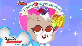 ¡Bichos! |  Listos Para El Preescolar | Ready for Preschool | Disney Junior